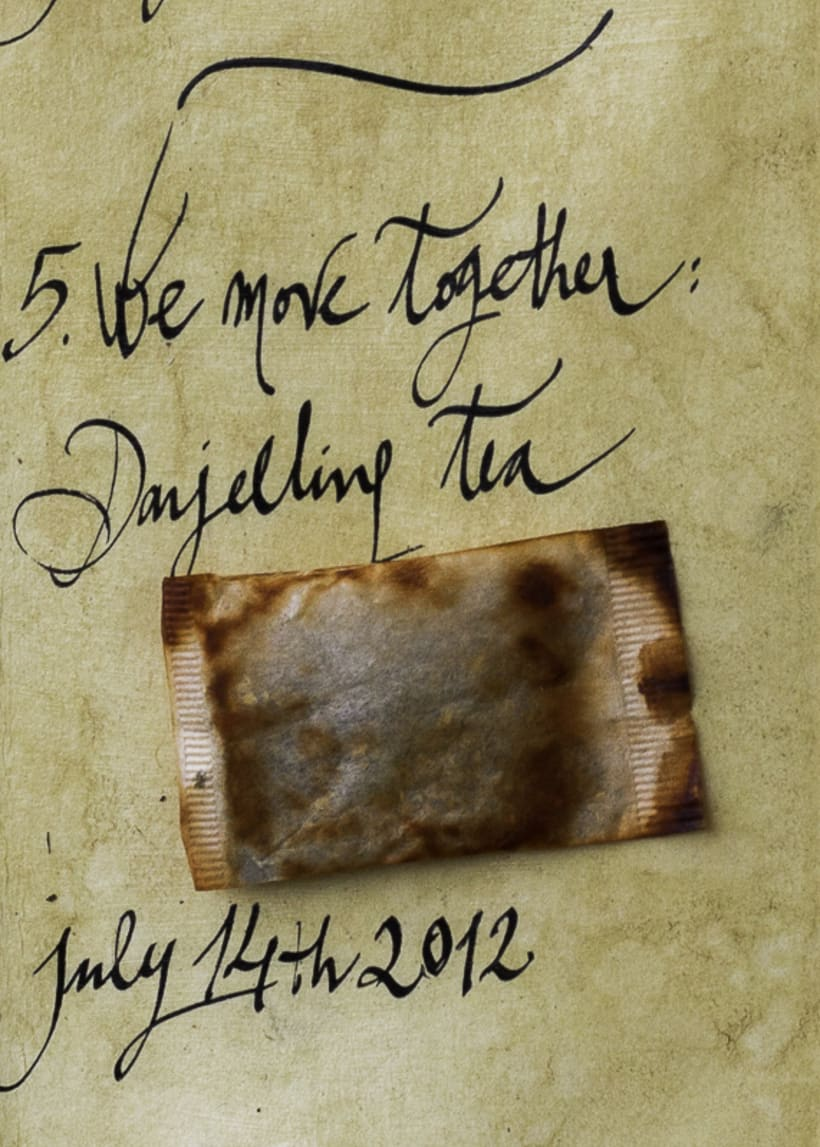Our Tea Love Story (cabinet of curiosities) 9