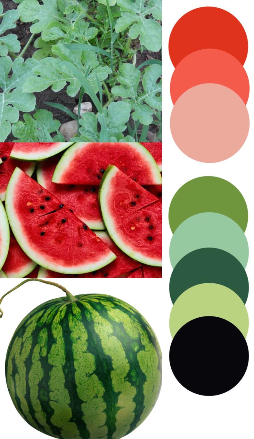 Watermelon - Mi Proyecto del curso Motivos para repetir (2) 0