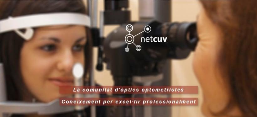 Diseño Gráfico (Día internacional de la visió a Terrassa 2012 & NETCUV) 3