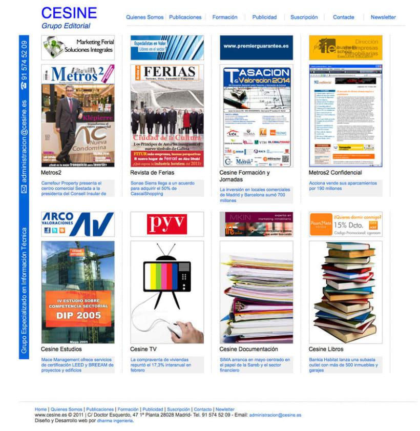 Cesine - Página a medida realizada para grupo editorial 0