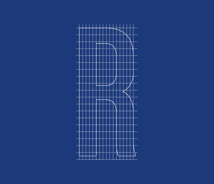 Reebok one series custom type 5