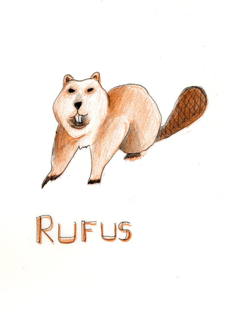 Proyecto a dos tintas! Rufus! -1