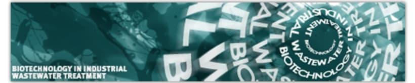 Web/Banners promocionales 1