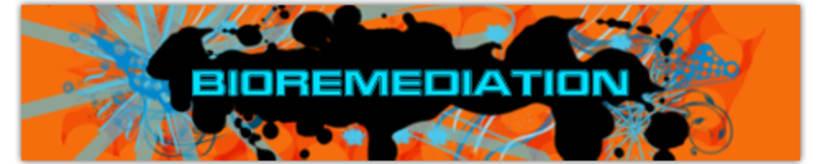 Web/Banners promocionales 2