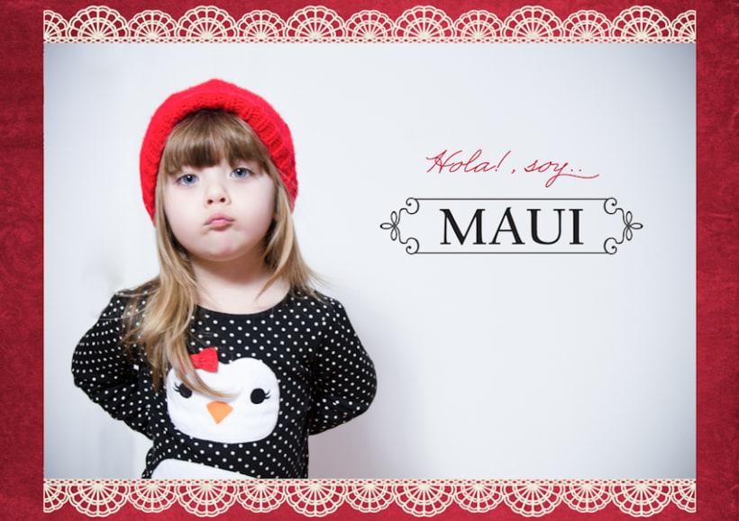 MAUI - MiniBook  -1