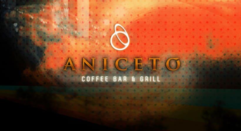 Branding Aniceto 10