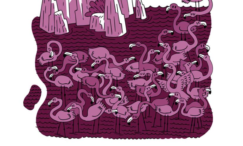 Flamingos por aquí, flamingos por allá...  3