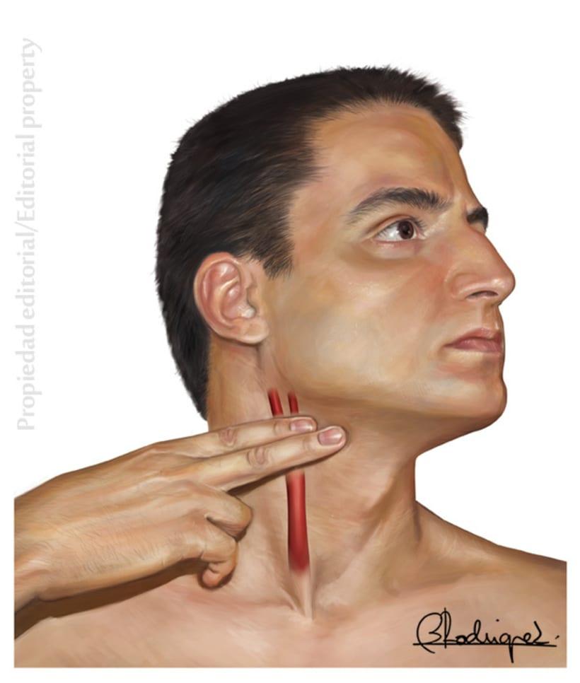 anatomia clínica 5