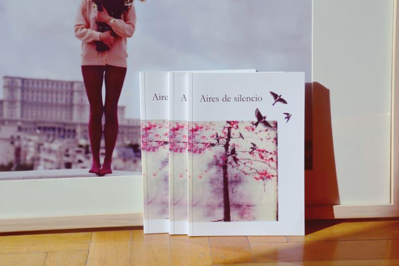 Aires de Silencio - Proyecto Editorial 2