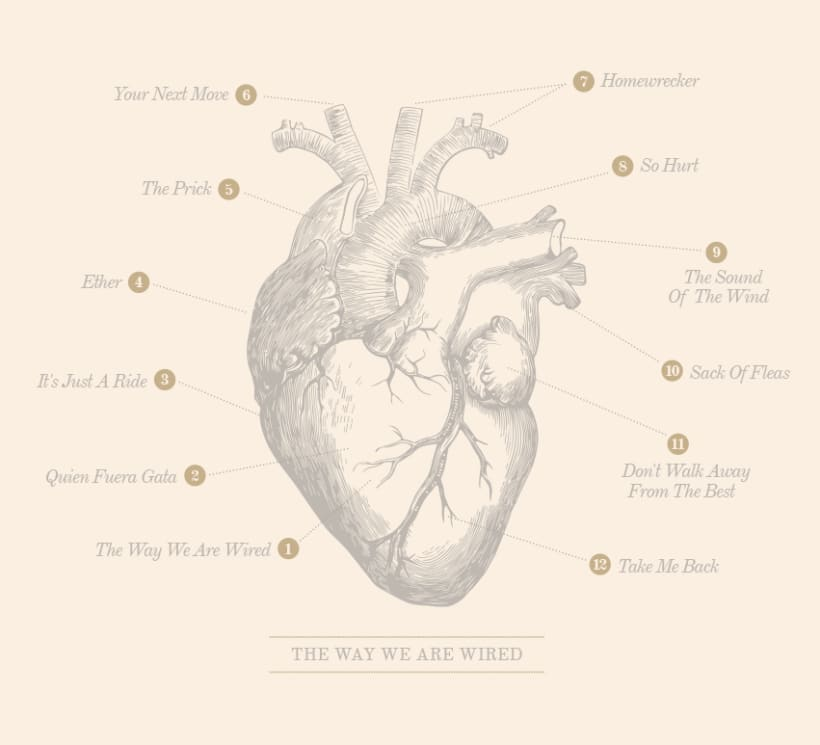 THE WAY WE ARE WIRED · Digipack Design 4
