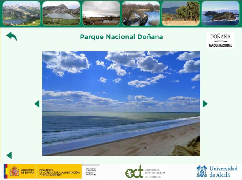Proyecto DUSPAMAP. Diseño web y de logotipo 6