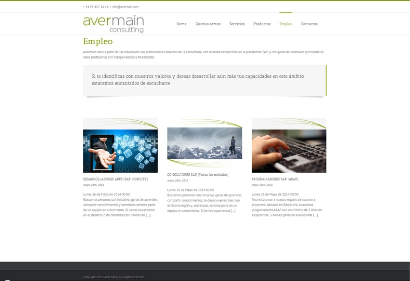 Avermain consulting 3