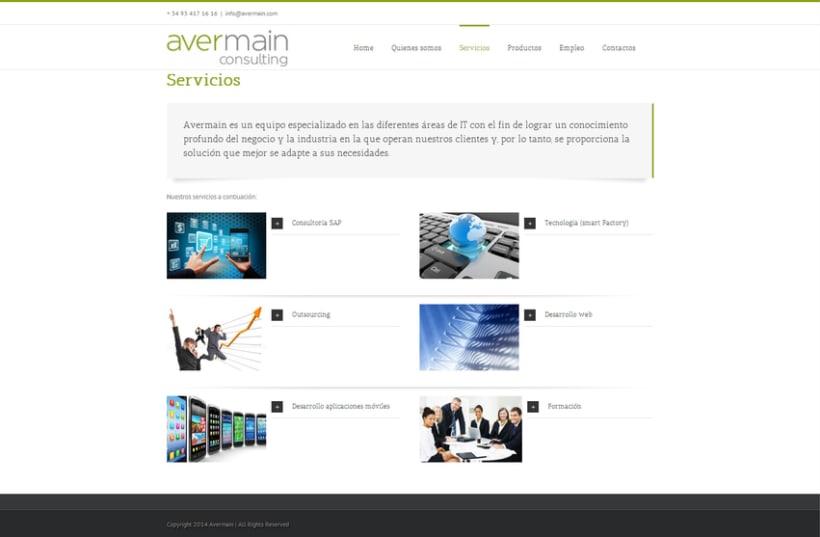 Avermain consulting 2