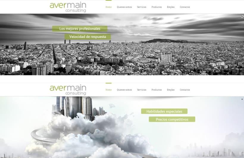 Avermain consulting 0