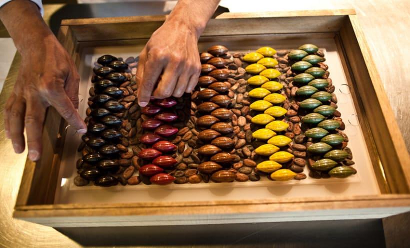 Diseño de producto | Cacao Barry 3