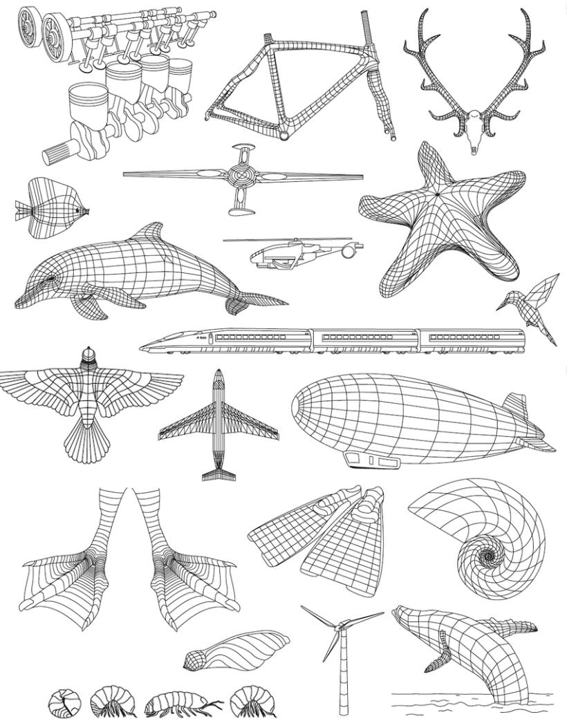 ...ilustraciones varias... 8