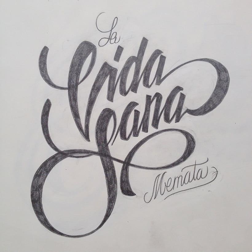Vida Sana lettering 3