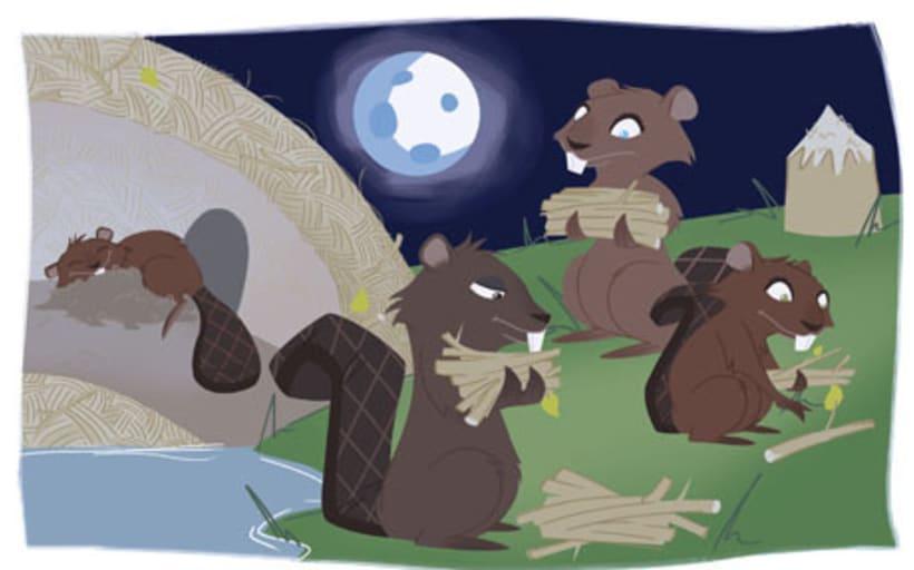 Twin Beavers 2