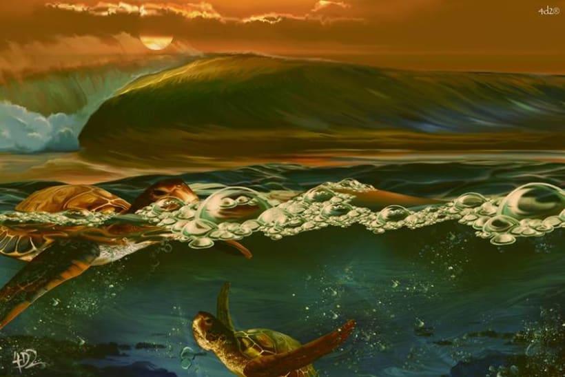 4D2 Surf&arte 3