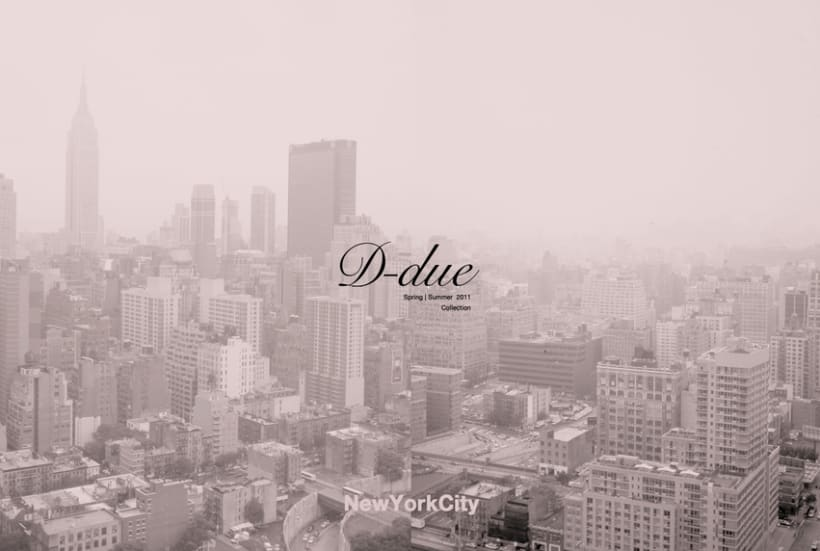 D-due NYC  0