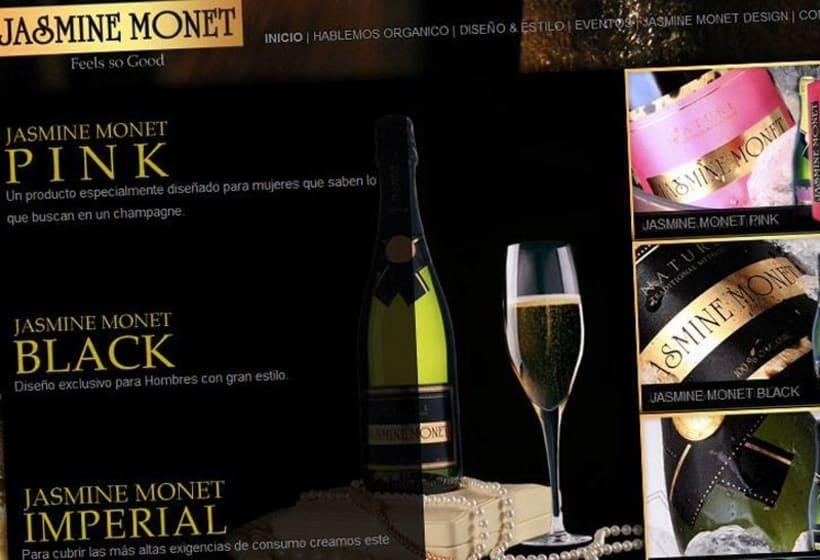 diseño web de vino y champagne orgánico de Argentina -1
