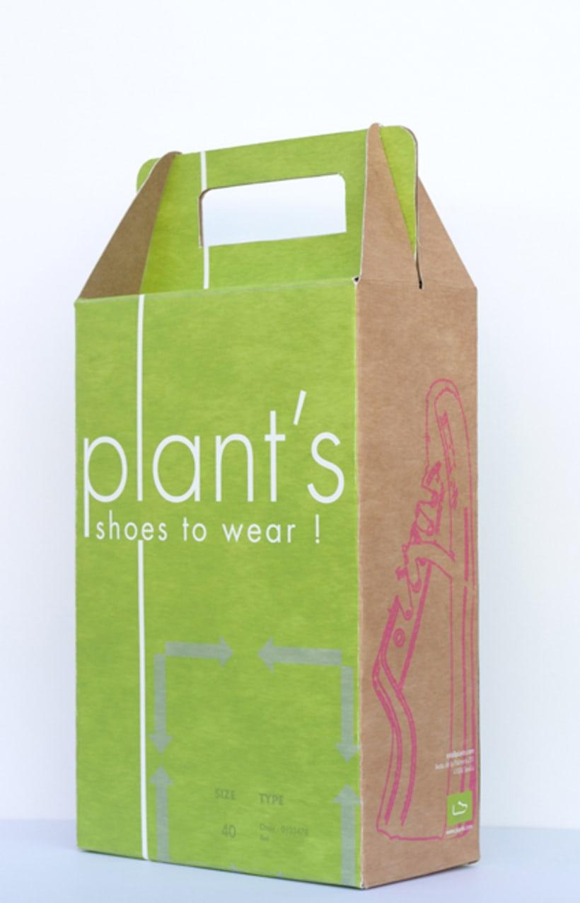 Brand Plant's 16