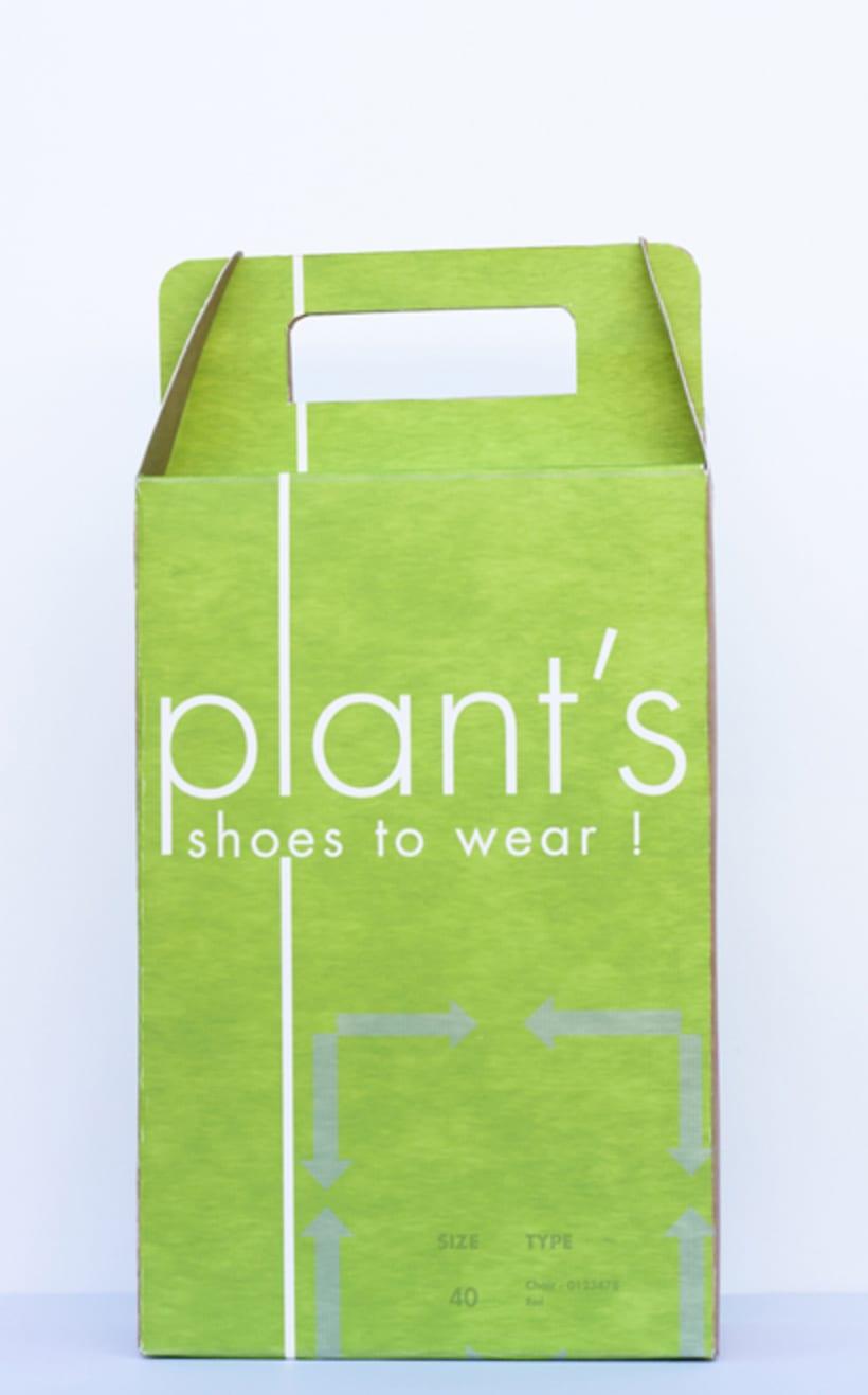 Brand Plant's 18