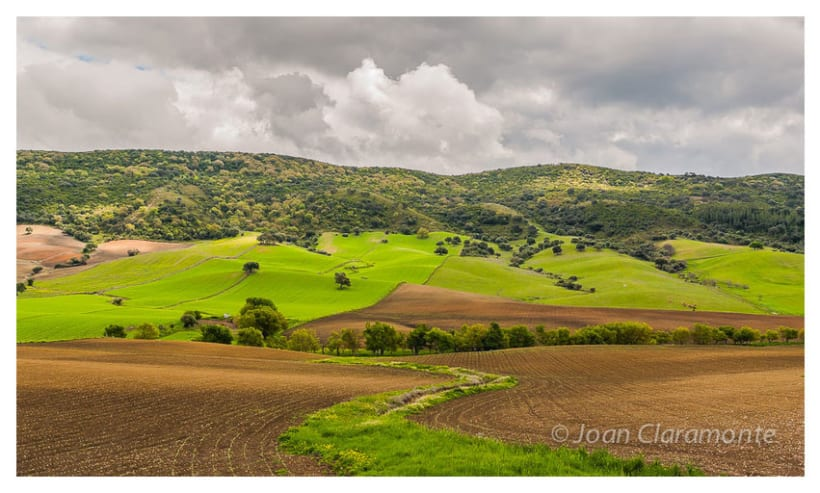 Paisaje Rural 1
