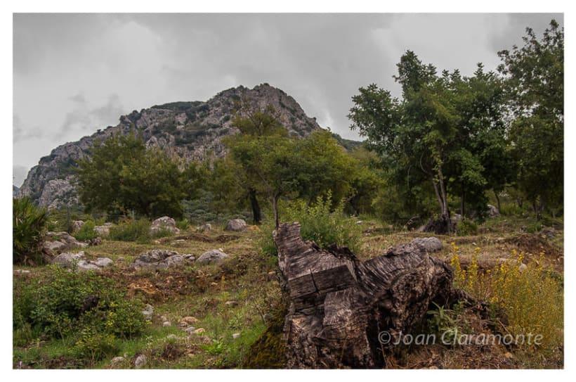 Paisaje Rural 7
