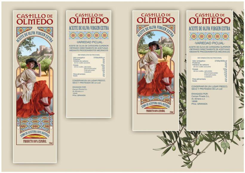 CASTILLO DE OLMEDO 3