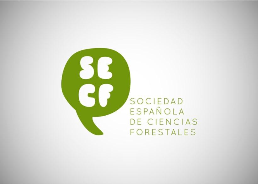 Identidad Corporativa SECF 1