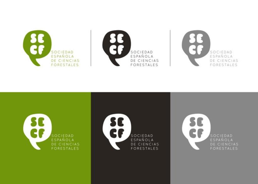 Identidad Corporativa SECF 3
