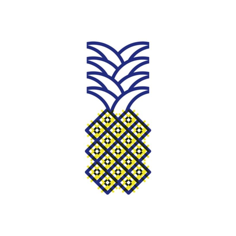 Ananas comosus 0