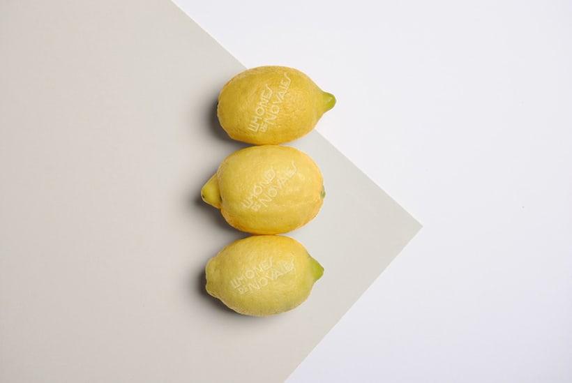 Limones de Novales 2