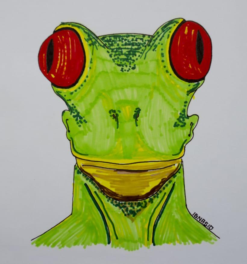 Hombre rana -1