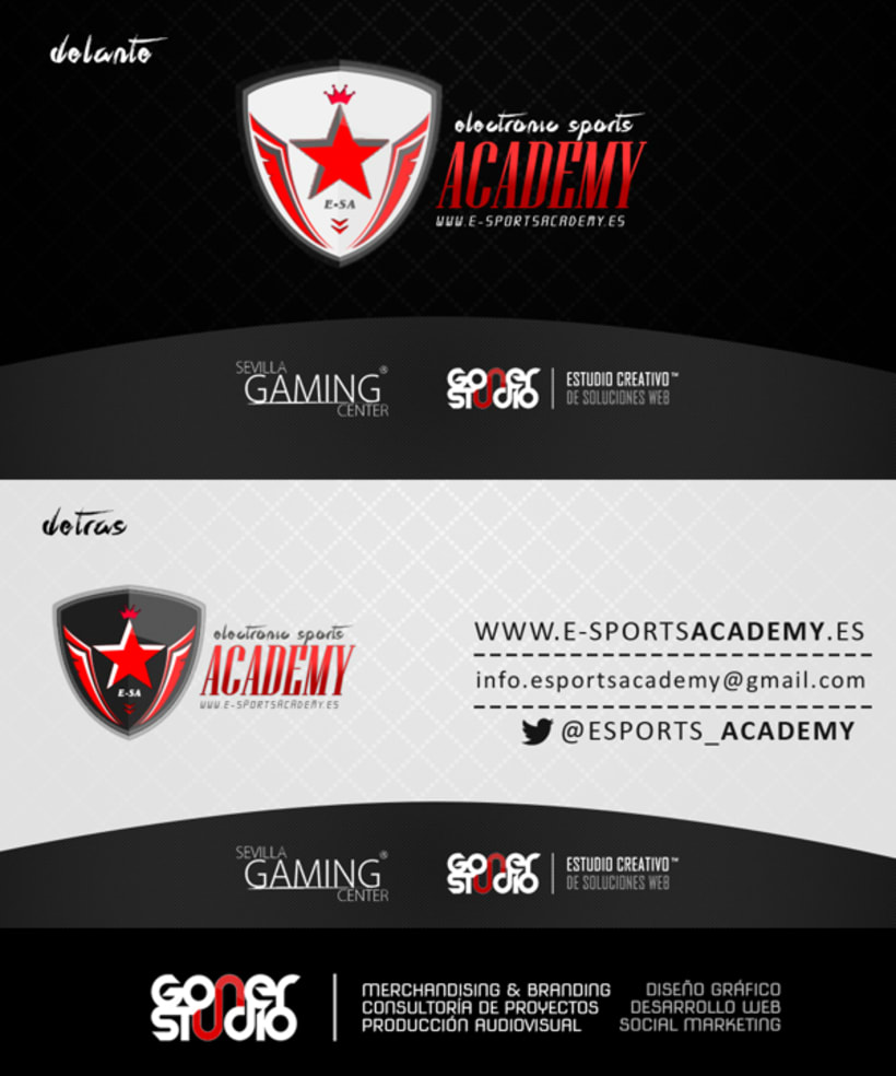 Electronic Sports Academy -1