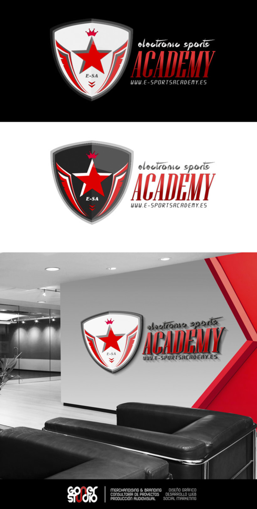 Electronic Sports Academy 1