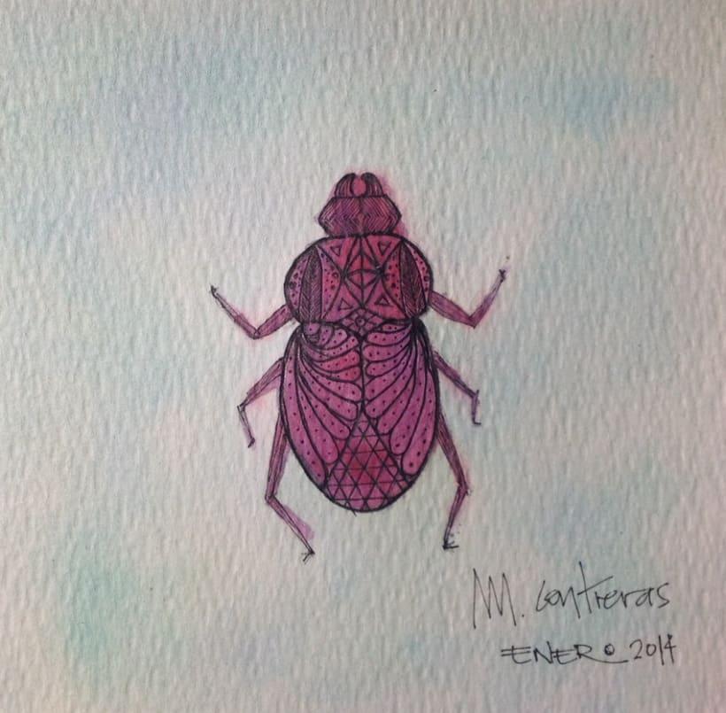 Pinky beetle!  -1