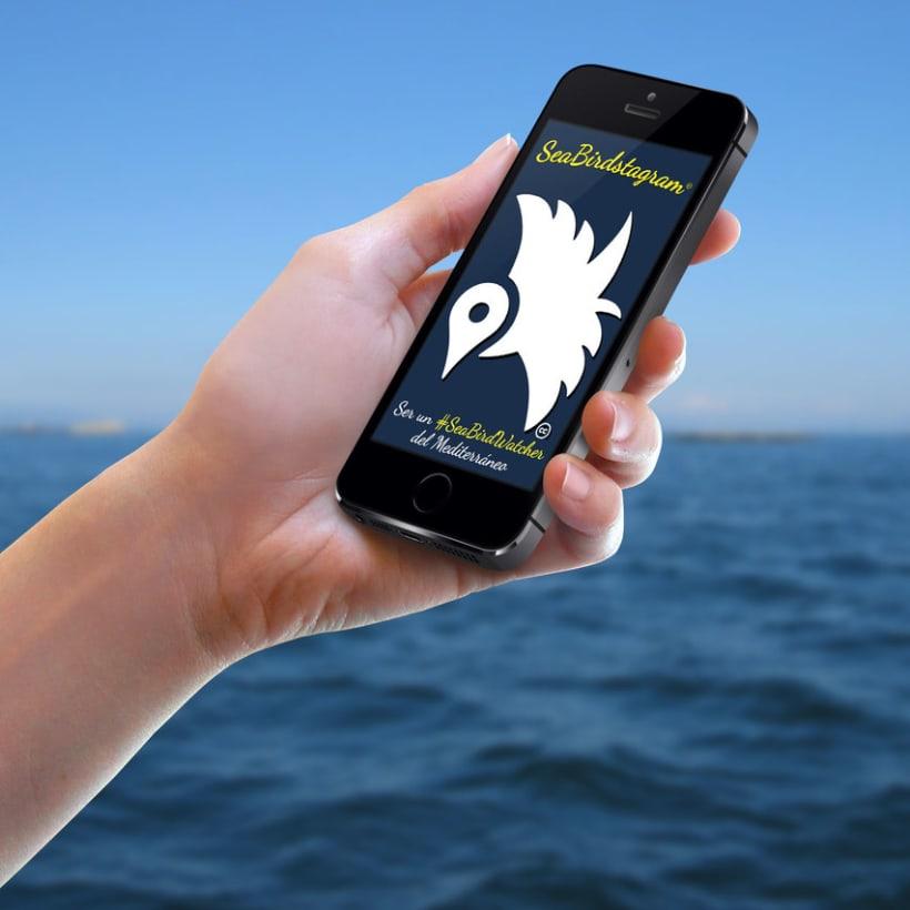 #SeaBirdstagram. App vigilancia de aves en el Mediterráneo 0