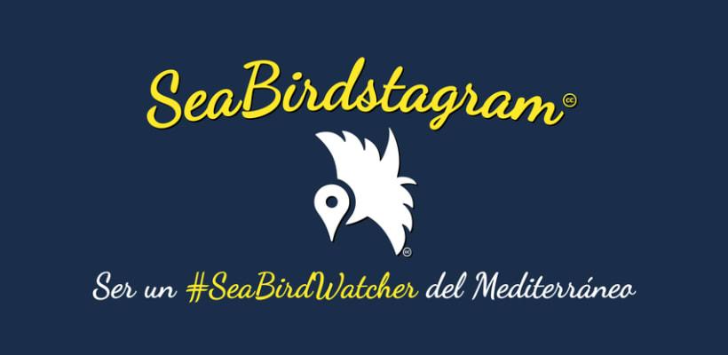 #SeaBirdstagram. App vigilancia de aves en el Mediterráneo 1