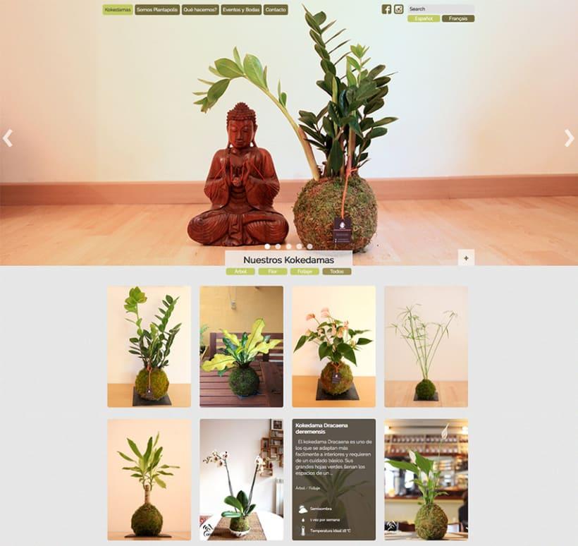 Plantapolis, diseño web y piezas gráficas 1
