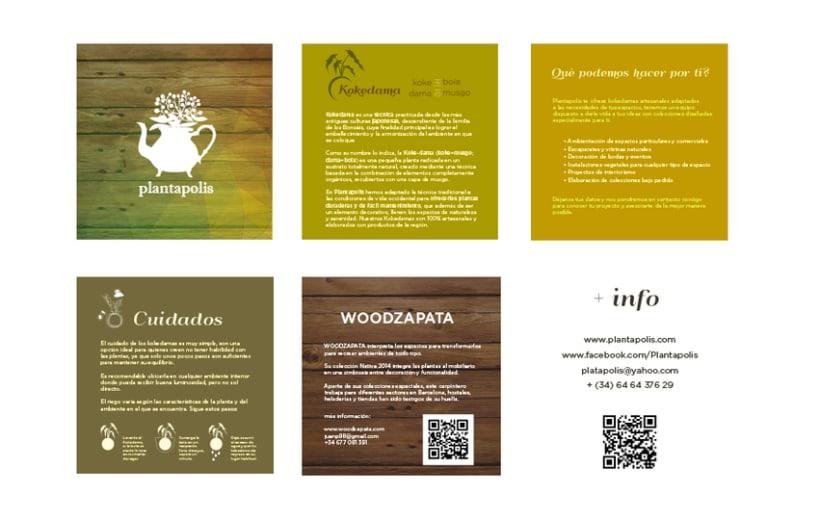 Plantapolis, diseño web y piezas gráficas 6
