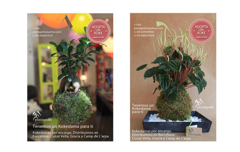 Plantapolis, diseño web y piezas gráficas 8