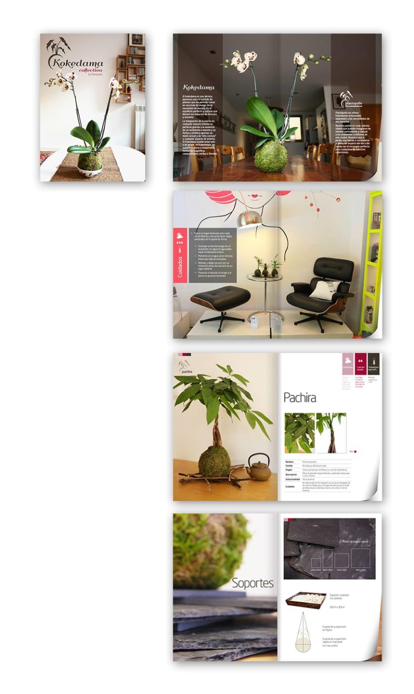 Plantapolis, diseño web y piezas gráficas 12
