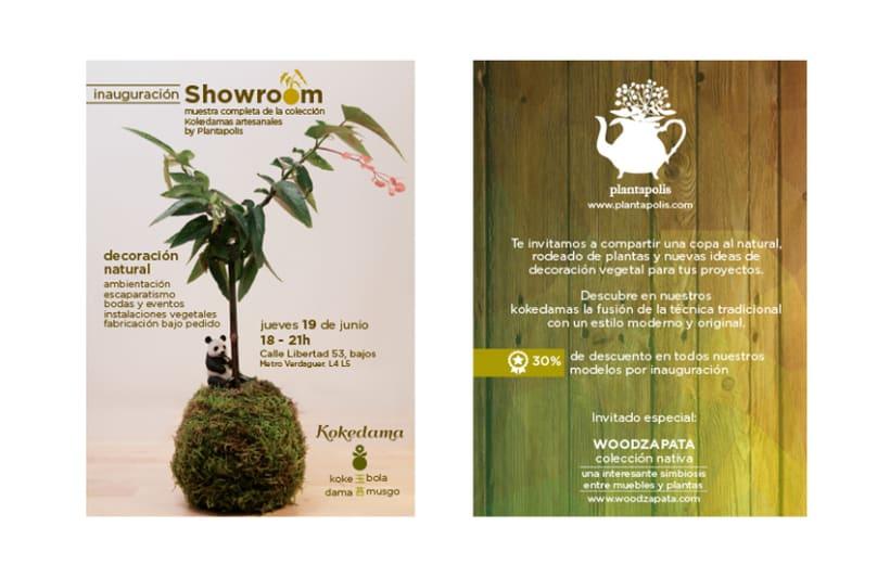 Plantapolis, diseño web y piezas gráficas 5