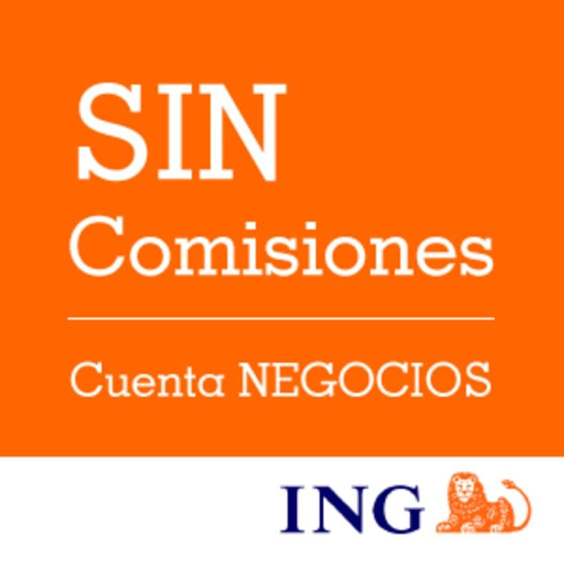 Campaña Ficticia para ING 2