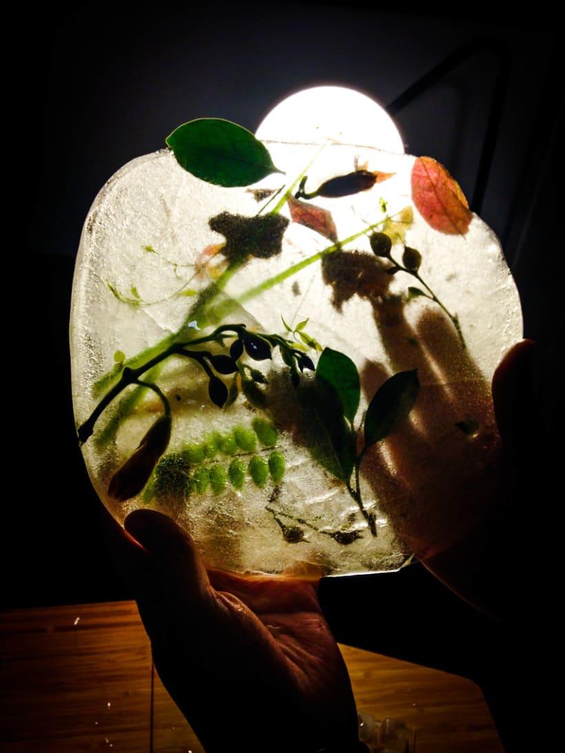 FAWN // Tom Waits // Dirección de arte y composición de bodegón 11