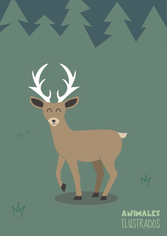Animales ilustrados 4