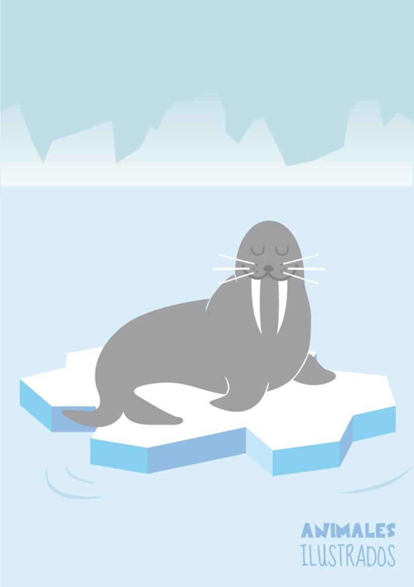 Animales ilustrados 3