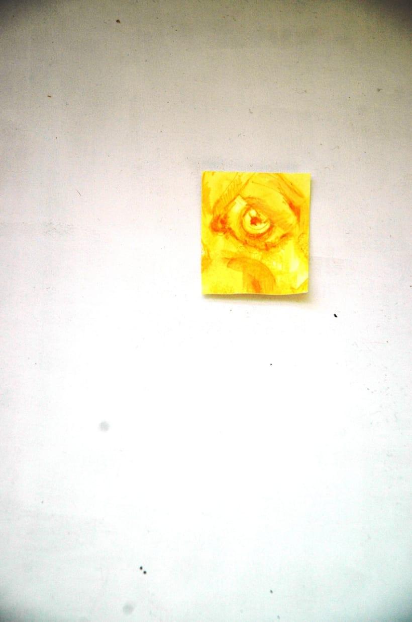 Amarillo Enfermedad 3